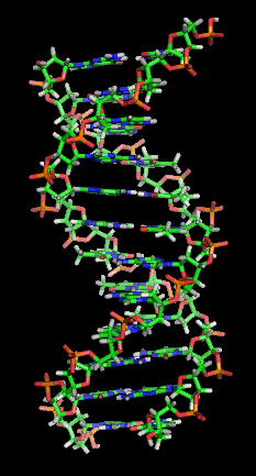 dna_orbit_animated_static_thumb.png